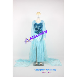 Disney Frozen Elsa Cosplay Costume version 01