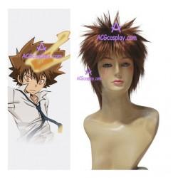 Katekyo Hitman Reborn! Sawada Tsunayoshi 25cm cosplay wig