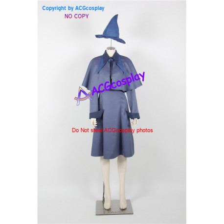 Harry Potter Fleur Delacour Cosplay Costume include hat
