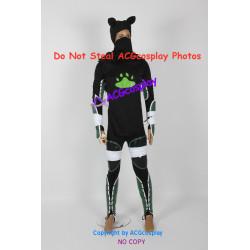 Legend of Zelda Sheik Cosplay Costume
