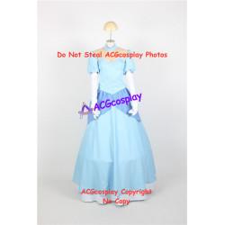 Infinite Stratos Houki Shinonono Cosplay Costume Cinderella dress version cosplay