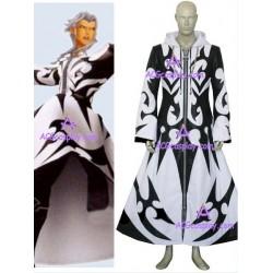 Kingdom Hearts Xemnus cosplay costume