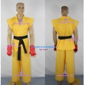 Street fighter Sean Matsuda cosplay costume include the gloves