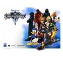 Kingdom Hearts cosplay wig